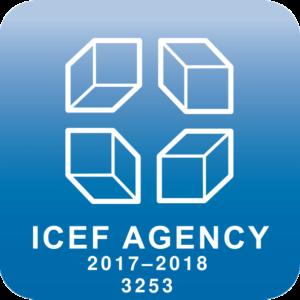 Наш уникальный логотип ICEF